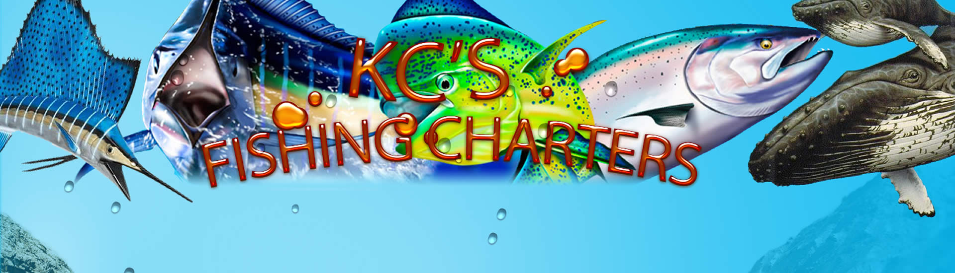 caseys-fishing-charters-coffs-coast-banner
